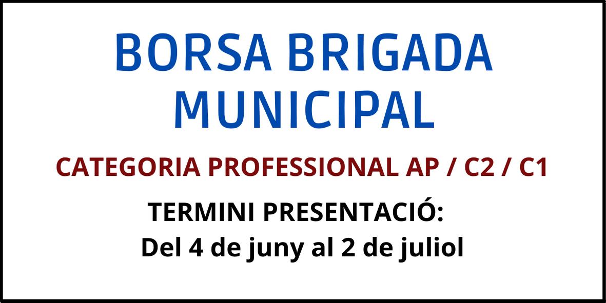 Borsa brigada municipal